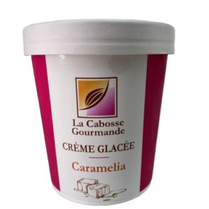 Crème Glacée Caramélia (marbré caramel salé)
